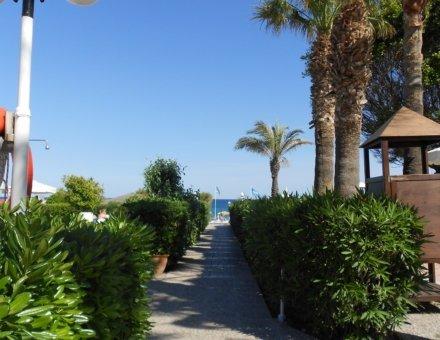 Auf diese Aufnahme ist ein kleiner Weg abgebildet. Der Weg führt zum Strand. Rechts und links des Weges stehen tolle grüne Hecken. Rechts sind vier große Palmen und ein kleines Häuschen abgebildet.